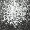 I love that magic moment when you catch a snowflake and remember that each is a little piece of this divine symmetry | Detail of 'Good Will' by Randall Stoltzfus | 5 by 7 inch archival postcard print signed by the artist